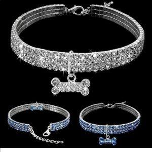 Jewelry - Cubic Zirconia Puppy Collar